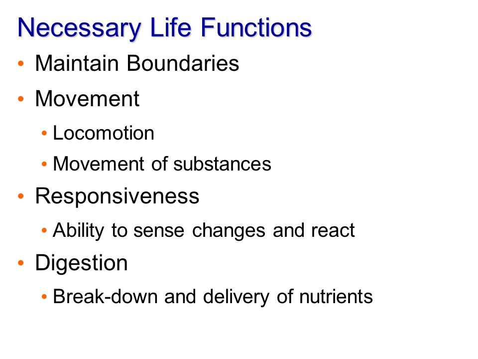 Necessary Life Functions Metabolism – chemical reactions within the body Production of energy Making body structures Excretion Elimination of waste from metabolic reactions Reproduction Production of future generation Growth Increasing of cell size and number