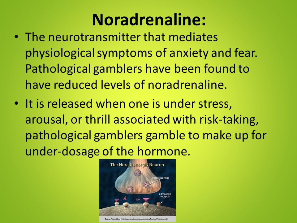 Noradrenaline: The neurotransmitter that mediates physiological symptoms of anxiety and fear. Pathological gamblers have been found to have reduced le