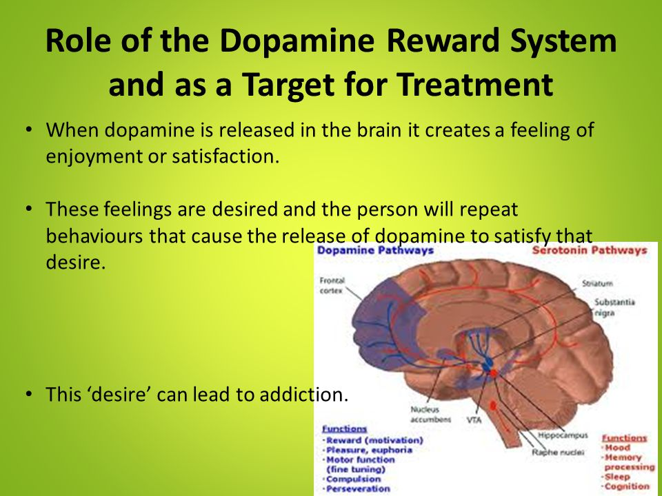 Role of the Dopamine Reward System and as a Target for Treatment When dopamine is released in the brain it creates a feeling of enjoyment or satisfact