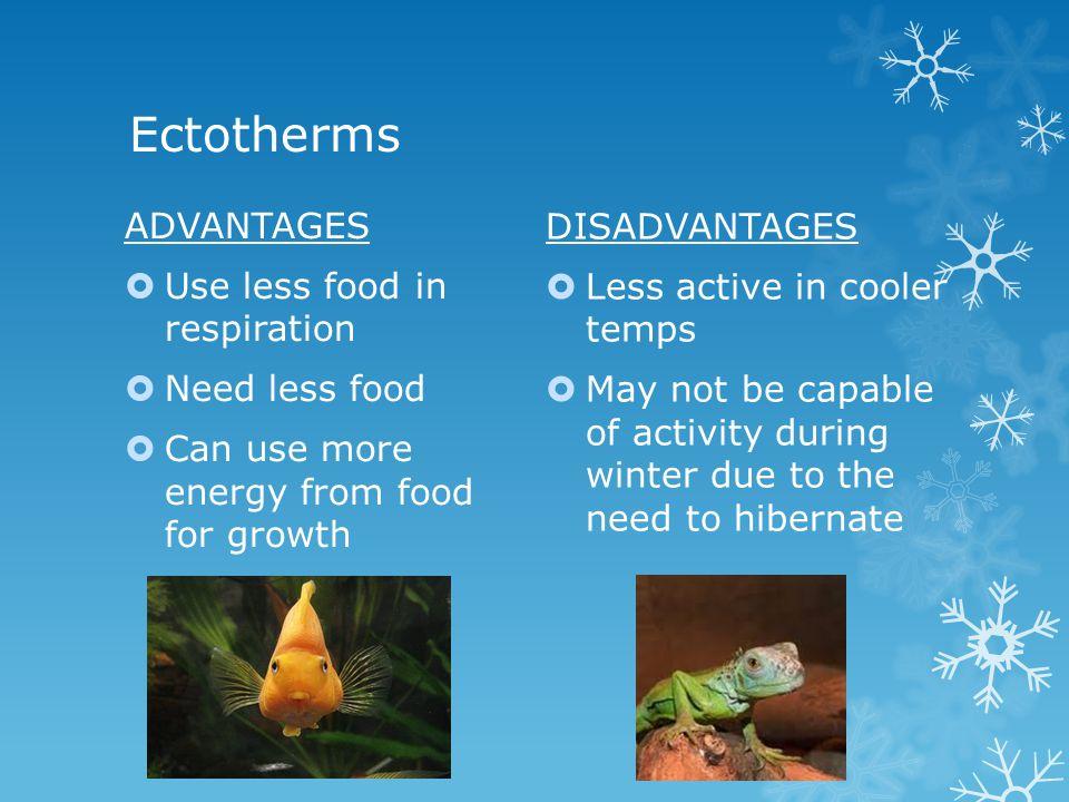 Responding: regulating heat exchange Heat loss Radiation Evaporation Conduction Loss of body fluids To the environment Heat gain Metabolism Environmental & behavioural