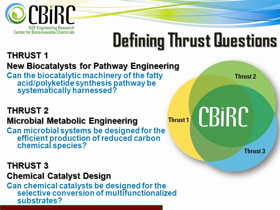 How Is CBiRC Research Organized 21