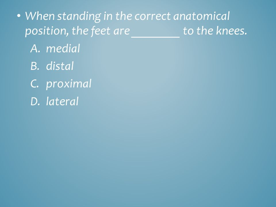 When standing in the correct anatomical position, the feet are ________ to the knees. A.medial B.distal C.proximal D.lateral