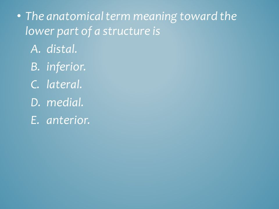 The anatomical term meaning toward the lower part of a structure is A.distal. B.inferior. C.lateral. D.medial. E.anterior.