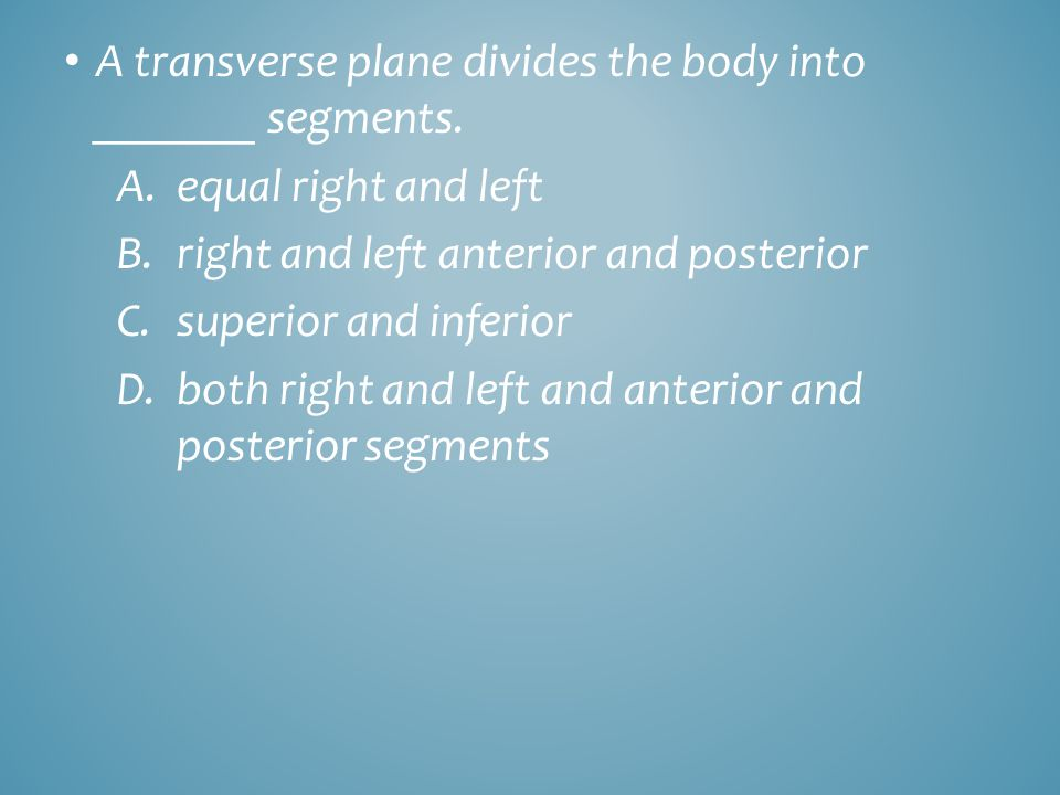 A transverse plane divides the body into _______ segments. A.equal right and left B.right and left anterior and posterior C.superior and inferior D.bo