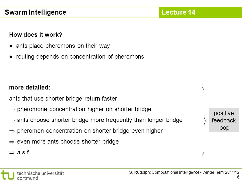 Lecture 14 G. Rudolph: Computational Intelligence Winter Term 2011/12 6 How does it work? ants place pheromons on their way routing depends on concent