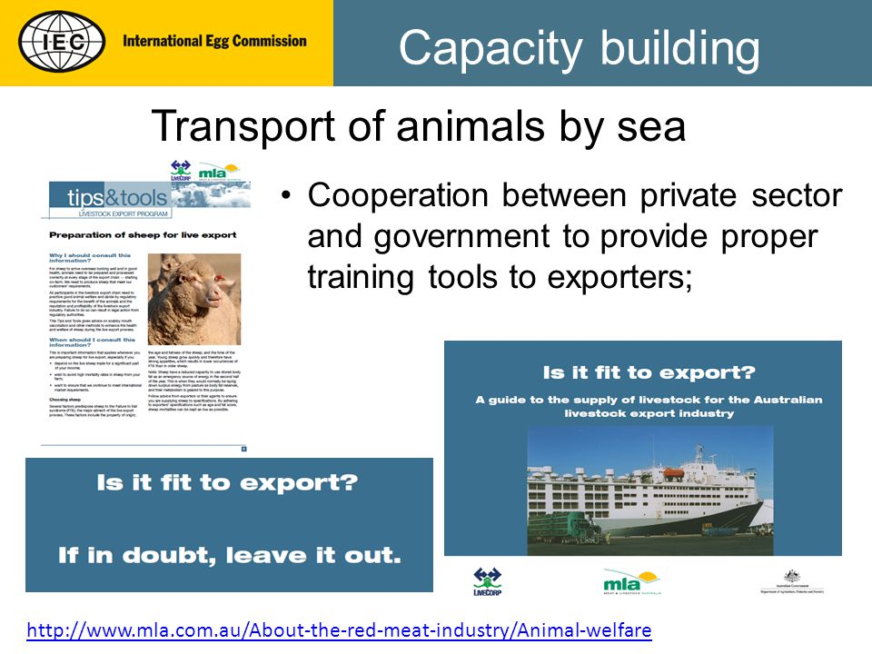 Capacity building Transport of animals by sea Cooperation between private sector and government to provide proper training tools to exporters; http://www.mla.com.au/About-the-red-meat-industry/Animal-welfare
