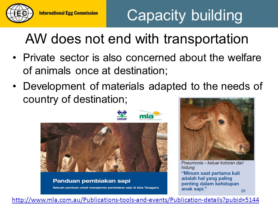 Capacity building Private sector is also concerned about the welfare of animals once at destination; Development of materials adapted to the needs of country of destination; AW does not end with transportation http://www.mla.com.au/Publications-tools-and-events/Publication-details?pubid=5144