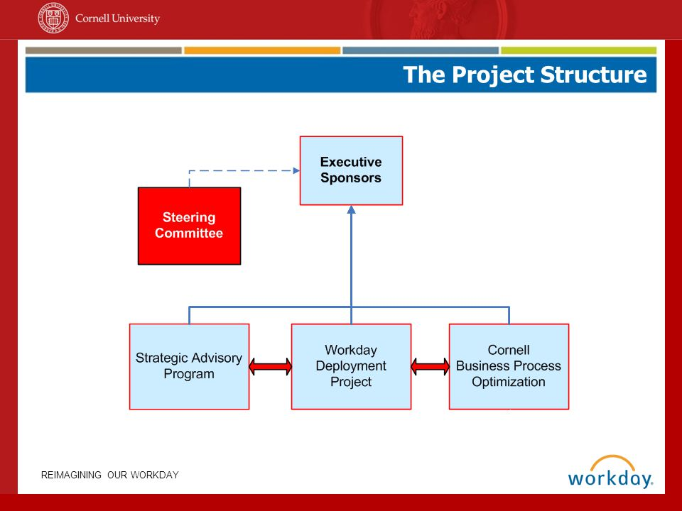 REIMAGINING OUR WORKDAY The Project Structure