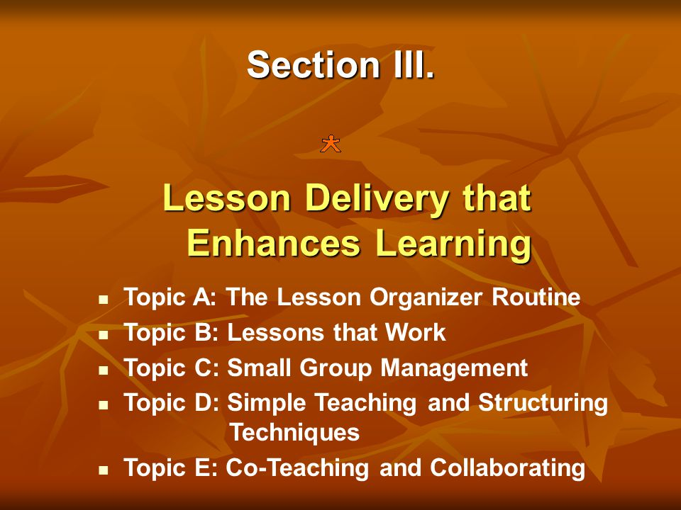 Section III. Lesson Delivery that Enhances Learning Topic A: The Lesson Organizer Routine Topic B: Lessons that Work Topic C: Small Group Management T