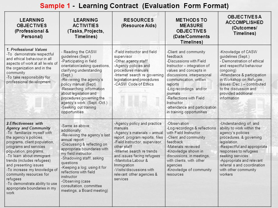 LEARNING OBJECTIVES (Professional & Personal) LEARNING ACTIVITIES (Tasks, Projects, Timelines) RESOURCES (Resource Aids) METHODS TO MEASURE OBJECTIVES
