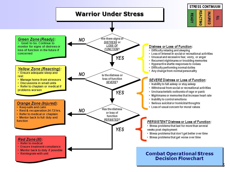 5 Warrior Under Stress Are there signs of DISTRESS or LOSS OF FUNCTION ? Distress or Loss of Function: Difficulty relaxing and sleeping Loss of intere