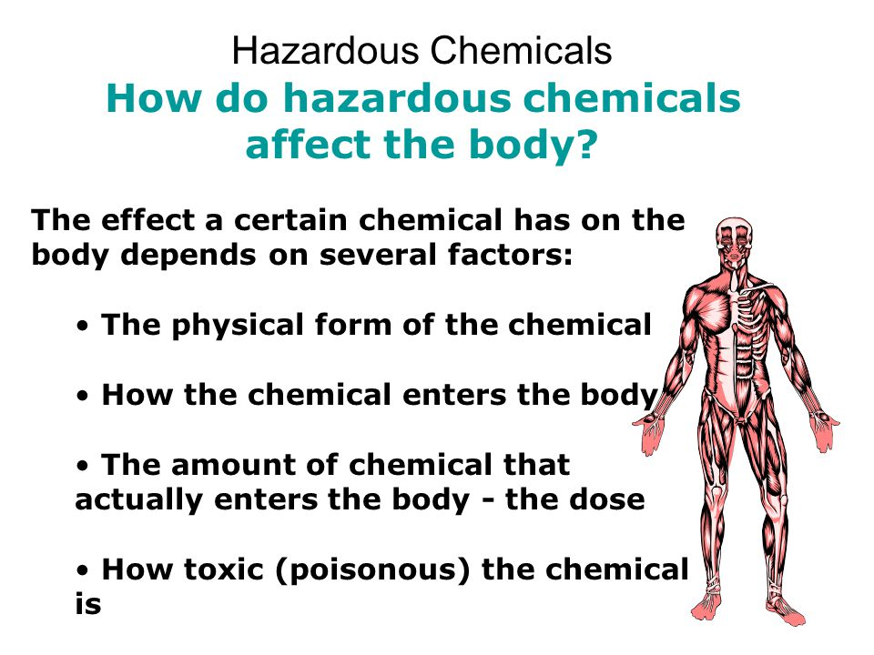 Hazardous Chemicals How do hazardous chemicals affect the body? The effect a certain chemical has on the body depends on several factors: The physical