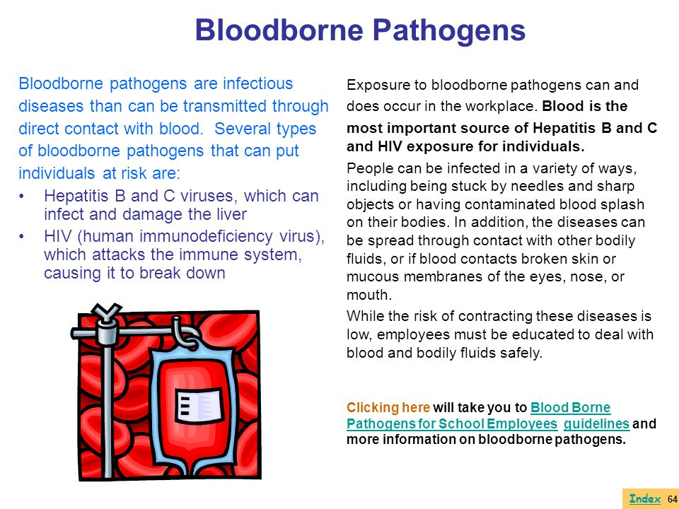 Bloodborne pathogens are infectious diseases than can be transmitted through direct contact with blood. Several types of bloodborne pathogens that can