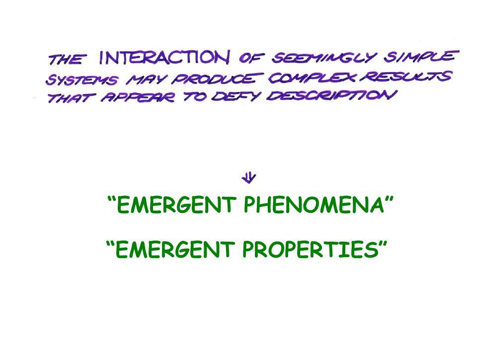 EMERGENT PHENOMENA EMERGENT PROPERTIES