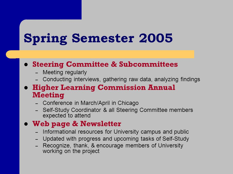 Spring Semester 2005 Steering Committee & Subcommittees – Meeting regularly – Conducting interviews, gathering raw data, analyzing findings Higher Lea