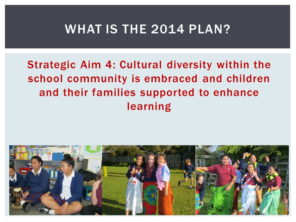 Strategic Aim 4: Cultural diversity within the school community is embraced and children and their families supported to enhance learning WHAT IS THE