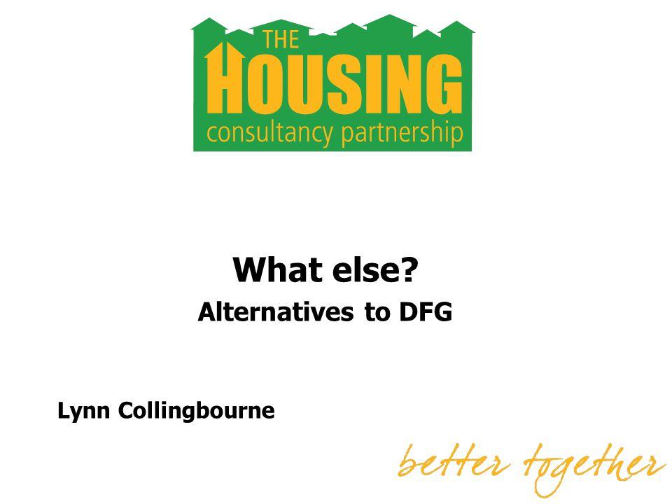 What else Alternatives to DFG Lynn Collingbourne