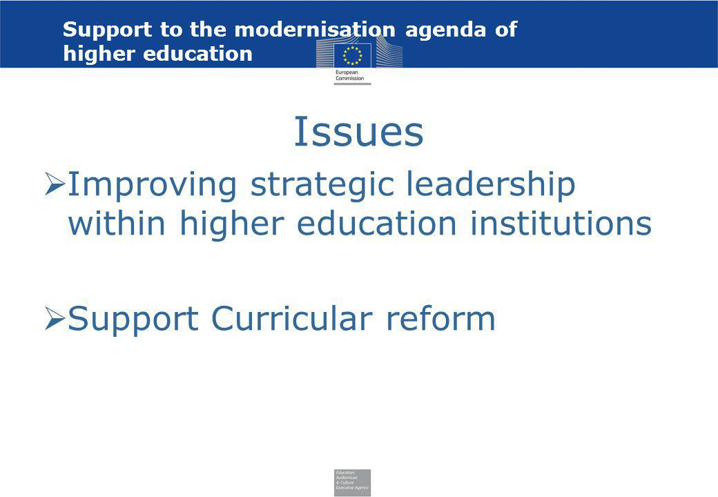 Support to the modernisation agenda of higher education Issues Improving strategic leadership within higher education institutions Support Curricular