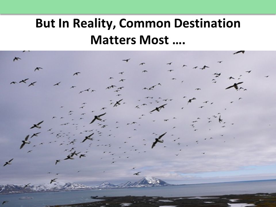 © E 3 Alliance, 2012 But In Reality, Common Destination Matters Most …. 22