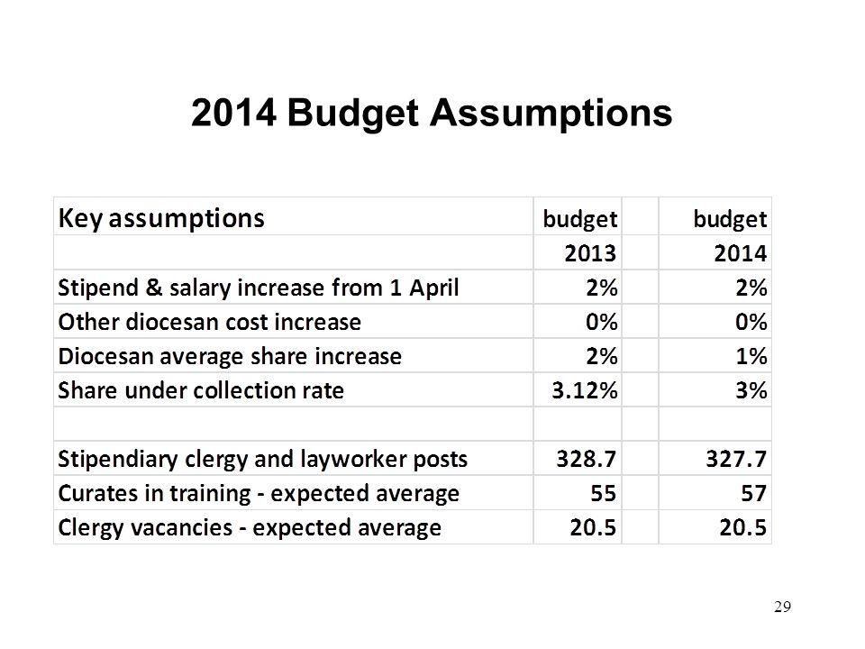 2014 Budget Assumptions 29
