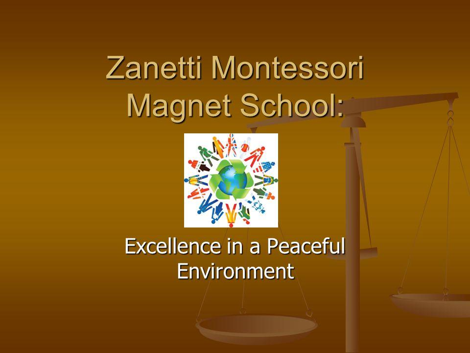 Zanetti Montessori Magnet School: Excellence in a Peaceful Environment