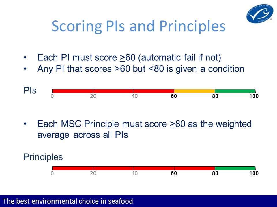 The best environmental choice in seafood Scoring PIs and Principles Each PI must score >60 (automatic fail if not) Any PI that scores >60 but <80 is given a condition PIs Each MSC Principle must score >80 as the weighted average across all PIs Principles 020406080100 020406080100