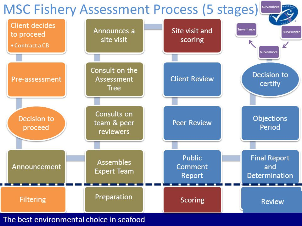 The best environmental choice in seafood Client decides to proceed Contract a CB Pre-assessment Decision to proceed Announcement Assembles Expert Team Consults on team & peer reviewers Consult on the Assessment Tree Announces a site visit Site visit and scoring Client ReviewPeer Review Public Comment Report Final Report and Determination Objections Period Decision to certify Surveillance Filtering Preparation Scoring Review MSC Fishery Assessment Process (5 stages)