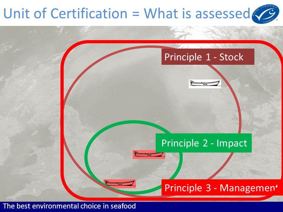 The best environmental choice in seafood Principle 1 - Stock Principle 2 - Impact Principle 3 - Management Unit of Certification = What is assessed