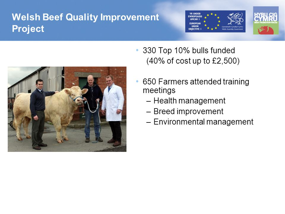 Welsh Beef Quality Improvement Project 330 Top 10% bulls funded (40% of cost up to £2,500) 650 Farmers attended training meetings –Health management –