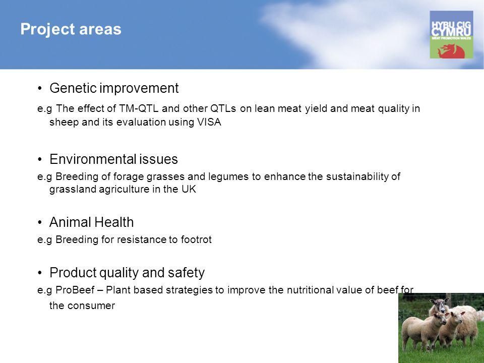 Project areas Genetic improvement e.g The effect of TM-QTL and other QTLs on lean meat yield and meat quality in sheep and its evaluation using VISA Environmental issues e.g Breeding of forage grasses and legumes to enhance the sustainability of grassland agriculture in the UK Animal Health e.g Breeding for resistance to footrot Product quality and safety e.g ProBeef – Plant based strategies to improve the nutritional value of beef for the consumer
