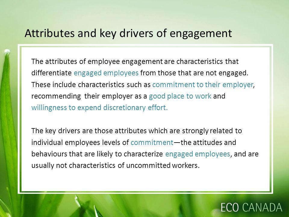 Attributes and key drivers of engagement The attributes of employee engagement are characteristics that differentiate engaged employees from those that are not engaged.