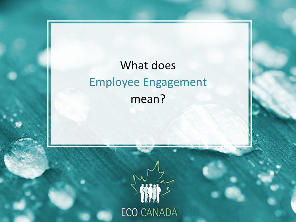 What does Employee Engagement mean?
