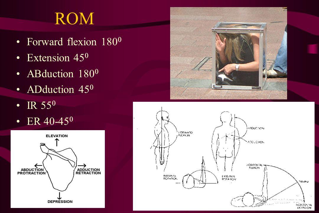 ROM Forward flexion 180 0 Extension 45 0 ABduction 180 0 ADduction 45 0 IR 55 0 ER 40-45 0