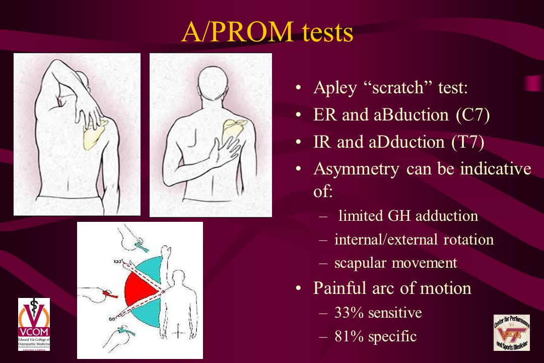 A/PROM tests Apley scratch test: ER and aBduction (C7) IR and aDduction (T7) Asymmetry can be indicative of: – limited GH adduction –internal/external