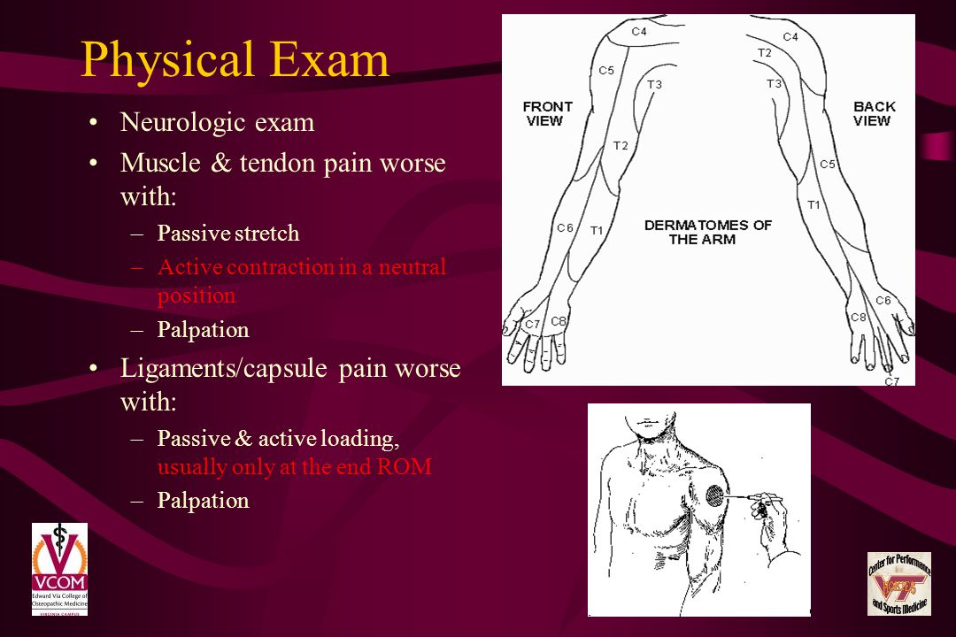 Physical Exam Neurologic exam Muscle & tendon pain worse with: –Passive stretch –Active contraction in a neutral position –Palpation Ligaments/capsule