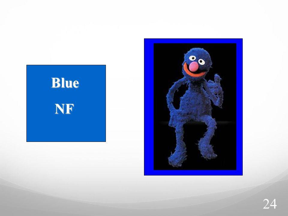 Blue NF NF 24
