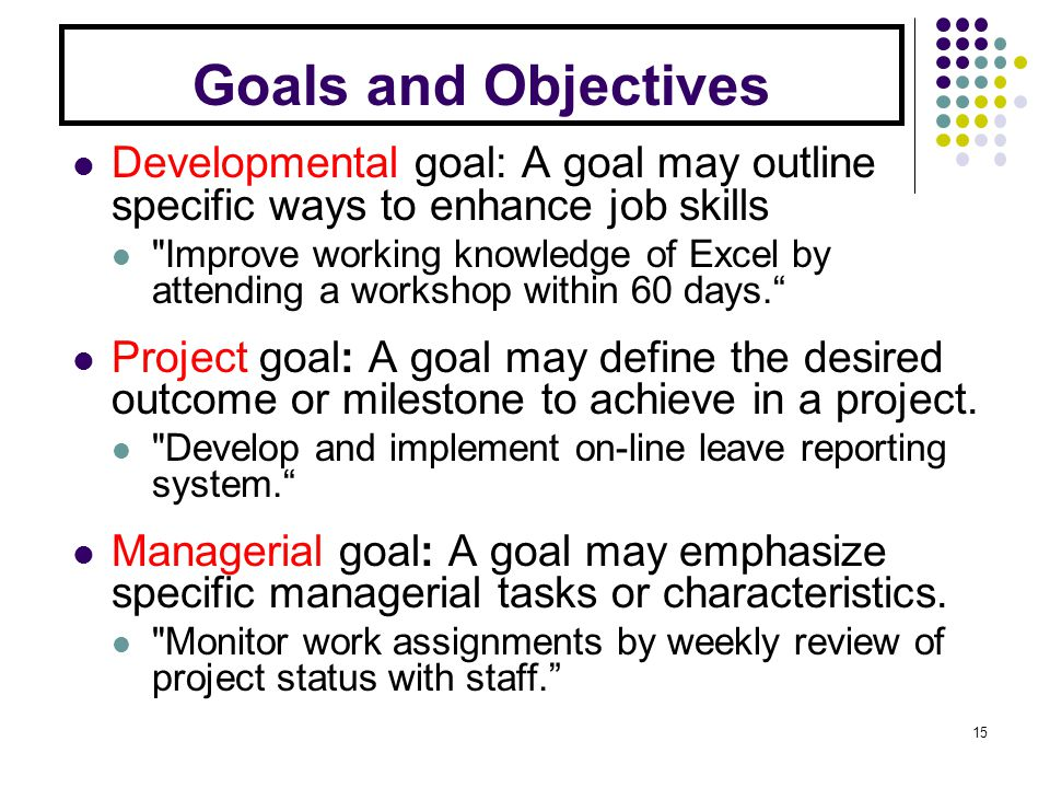 Goals and Objectives Developmental goal: A goal may outline specific ways to enhance job skills Improve working knowledge of Excel by attending a workshop within 60 days.