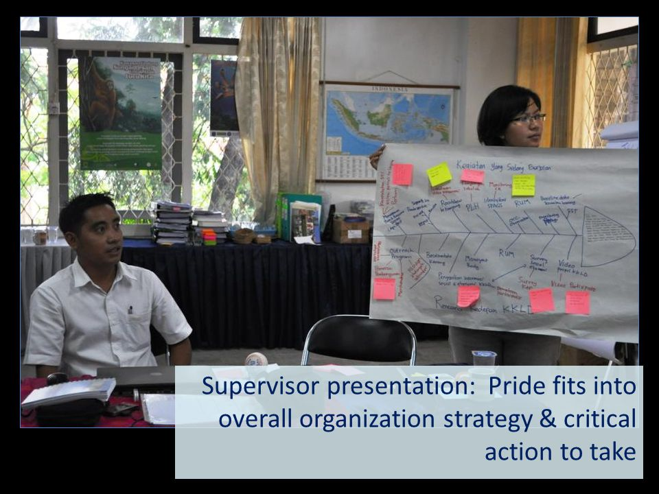 Supervisor presentation: Pride fits into overall organization strategy & critical action to take