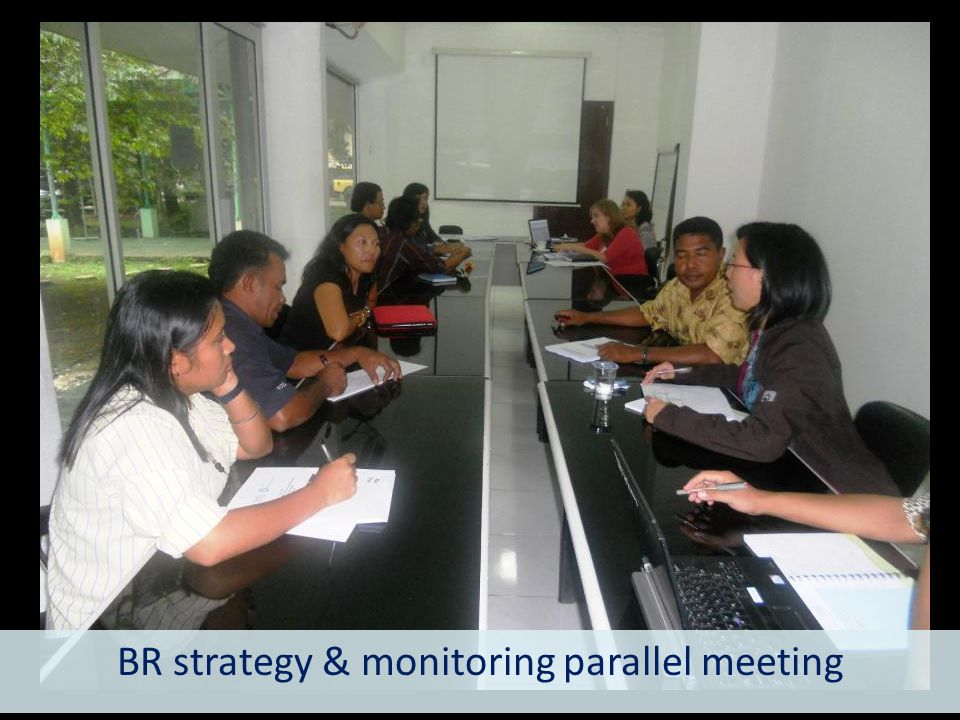 BR strategy & monitoring parallel meeting