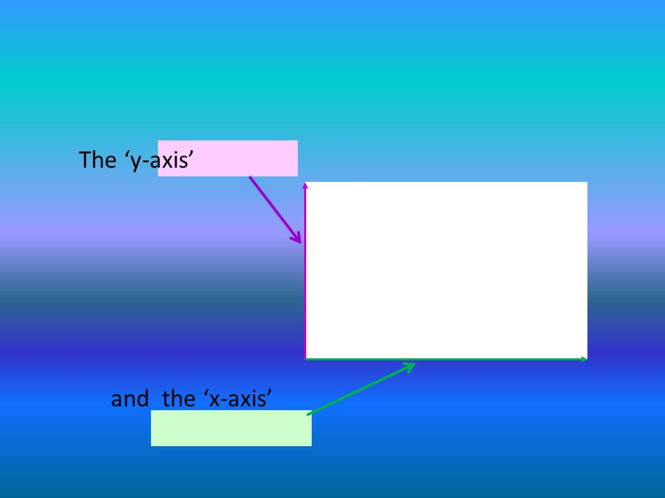 The y-axis and the x-axis