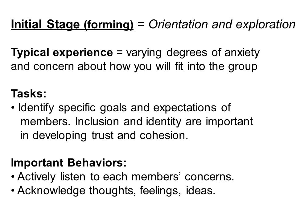 Initial Stage (forming) = Orientation and exploration Typical experience = varying degrees of anxiety and concern about how you will fit into the grou