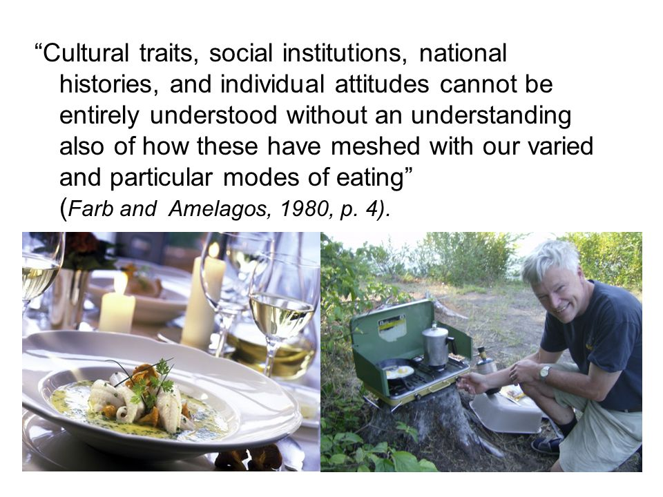 Cultural traits, social institutions, national histories, and individual attitudes cannot be entirely understood without an understanding also of how these have meshed with our varied and particular modes of eating ( Farb and Amelagos, 1980, p.