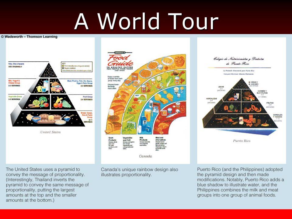 A World Tour