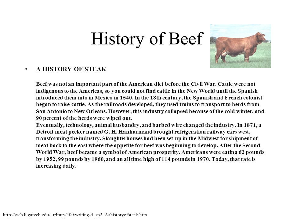 History of Beef A HISTORY OF STEAK Beef was not an important part of the American diet before the Civil War. Cattle were not indigenous to the America