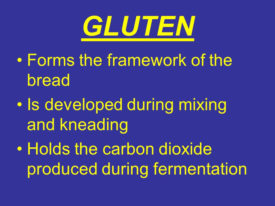 GLUTEN Forms the framework of the bread Is developed during mixing and kneading Holds the carbon dioxide produced during fermentation