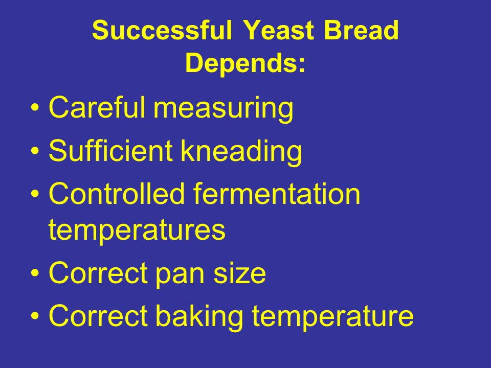 Successful Yeast Bread Depends: Careful measuring Sufficient kneading Controlled fermentation temperatures Correct pan size Correct baking temperature