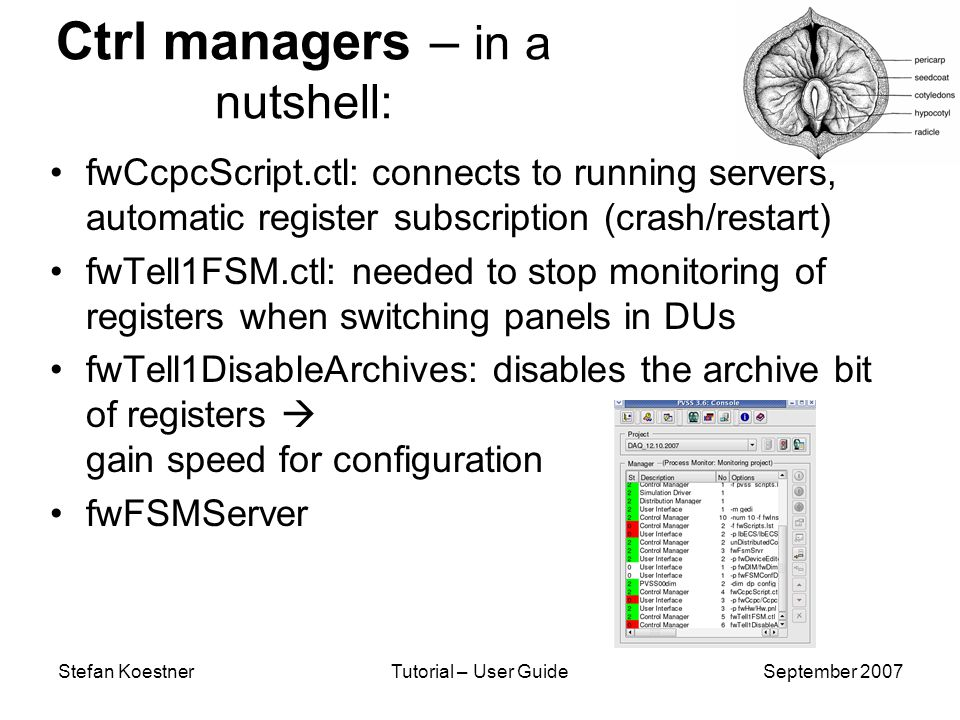 Stefan KoestnerTutorial – User GuideSeptember 2007 Ctrl managers – in a nutshell: fwCcpcScript.ctl: connects to running servers, automatic register subscription (crash/restart) fwTell1FSM.ctl: needed to stop monitoring of registers when switching panels in DUs fwTell1DisableArchives: disables the archive bit of registers gain speed for configuration fwFSMServer