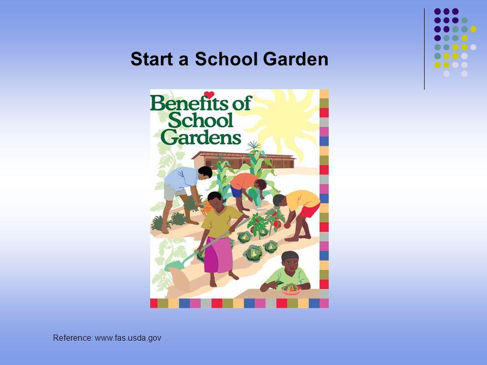 Start a School Garden Reference: www.fas.usda.gov