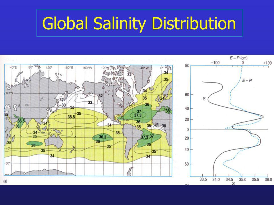 The Global Salinity Budget Salinity follows E-P to high degree through tropics and subtropics Degree of correspondence falls off towards the poles (sea ice…) Atlantic salinities are much higher than Pacific or Indian Oceans