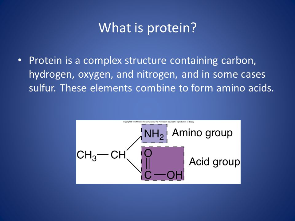 What is protein? Protein is a complex structure containing carbon, hydrogen, oxygen, and nitrogen, and in some cases sulfur. These elements combine to